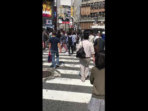 Busy Shibuya Crossing Tokyo