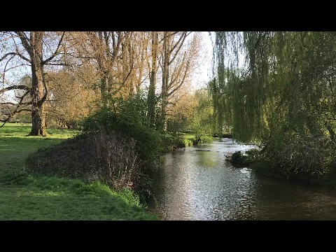 A Spring Day in the English Countryside