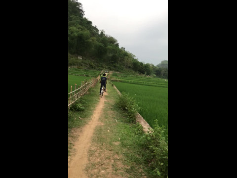 Cycling through Paddy Fields N.Vietnam