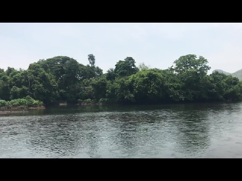 Elephant sanctuary on the River Kwae